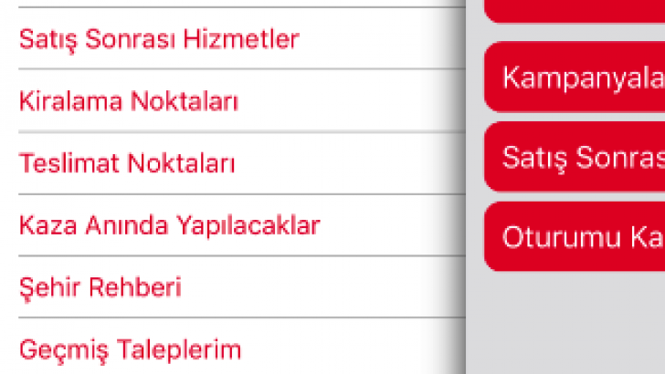 AVIS BU İŞİ BİLİYOR