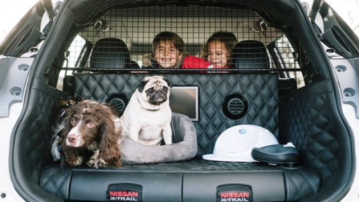 Nissan'dan köpek dostu ailelere özel X-Trail